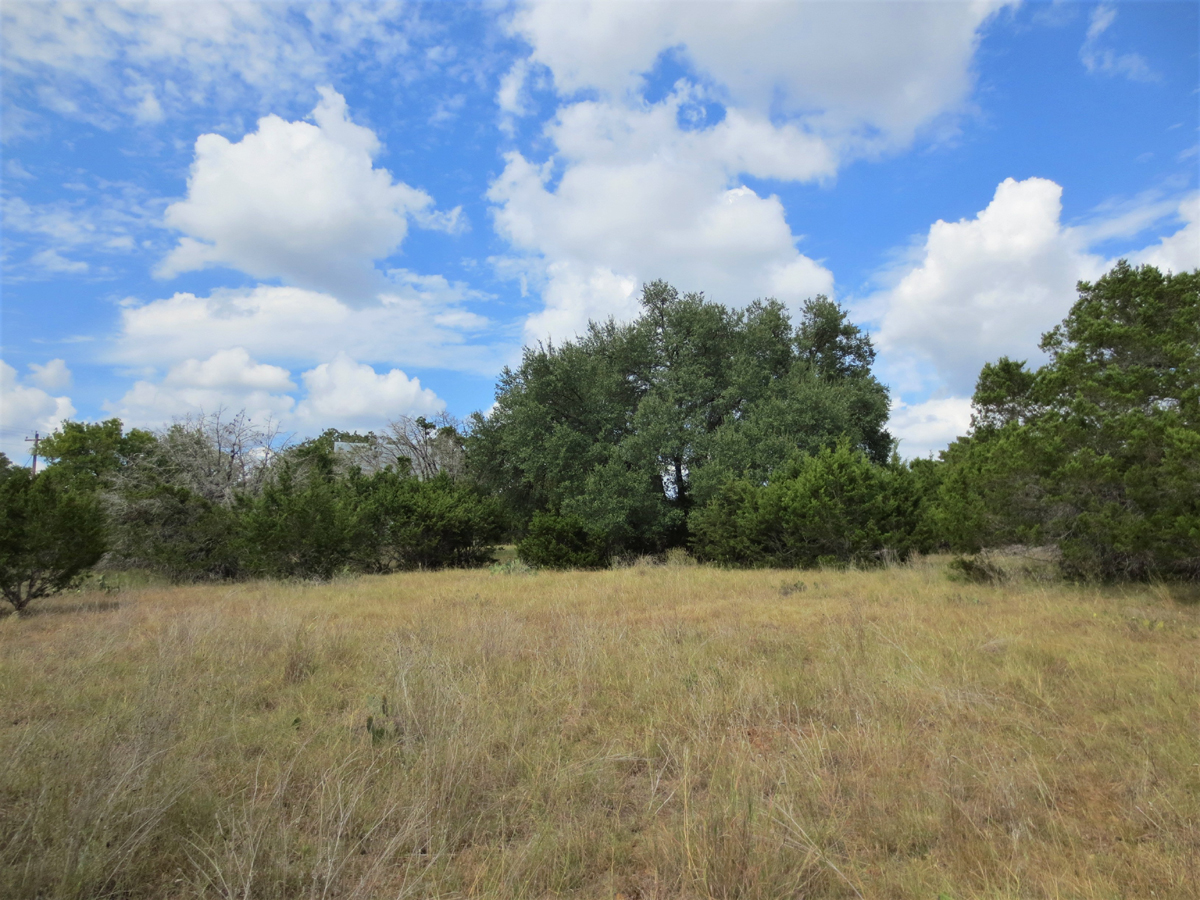 Lots of trees and brush to preserve privacy in Bandera River Ranch.