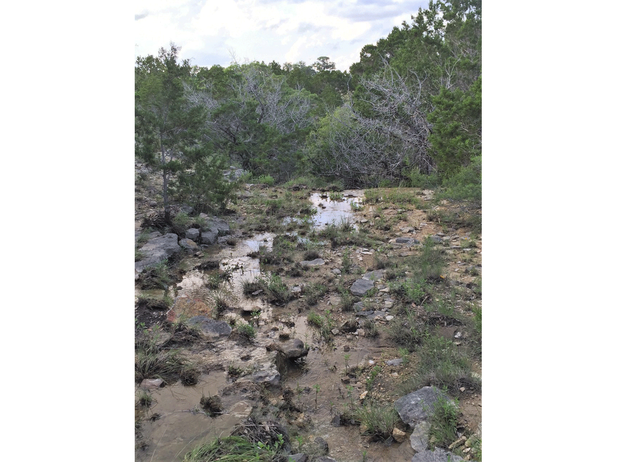 The little stream that forms with wet weather flows over the bluff.