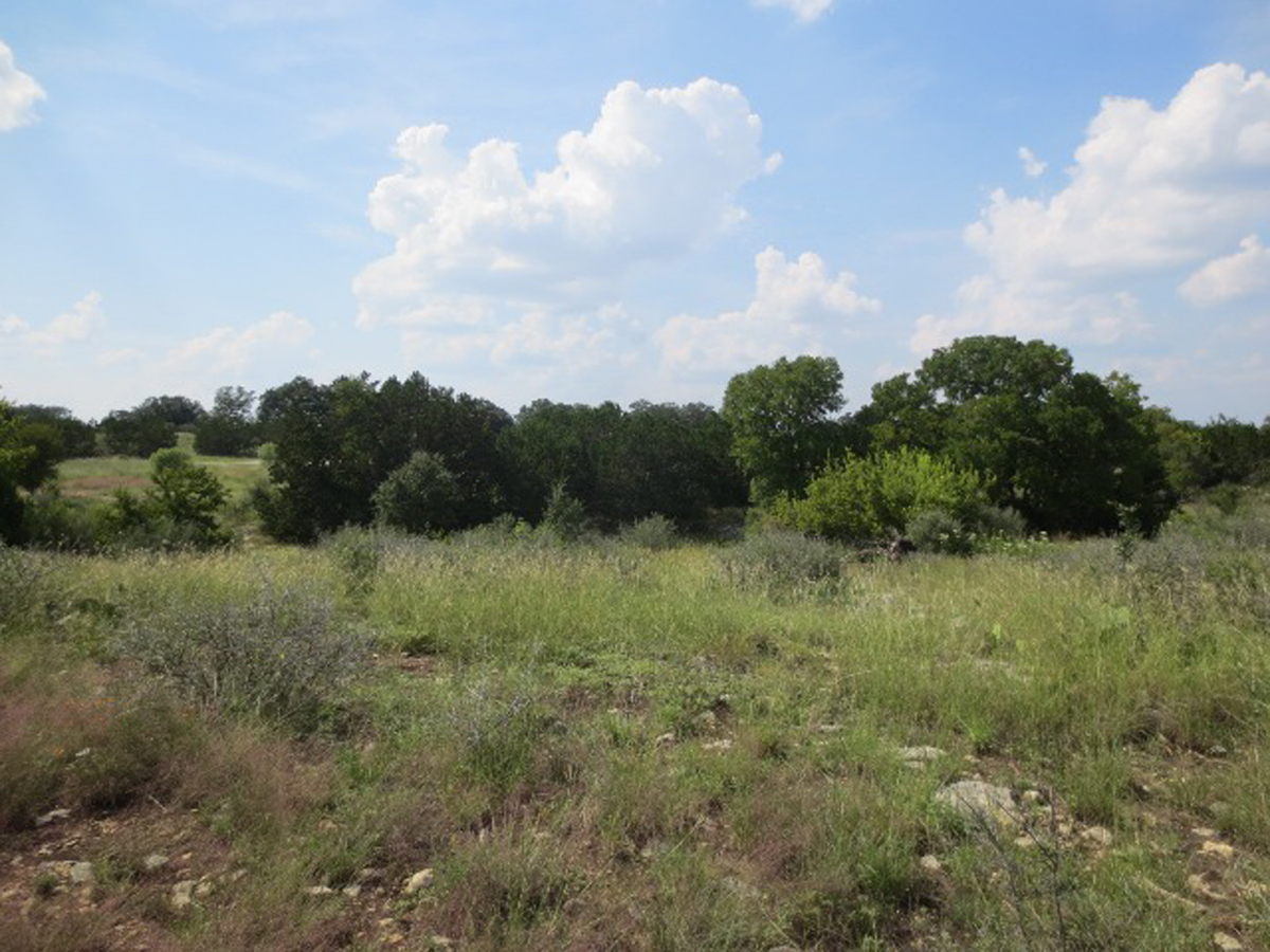 L0212/2 Acres with a Draw in Bridlegate Ranch. Listed for sale with Gail Stone Realty. 830.796.4640