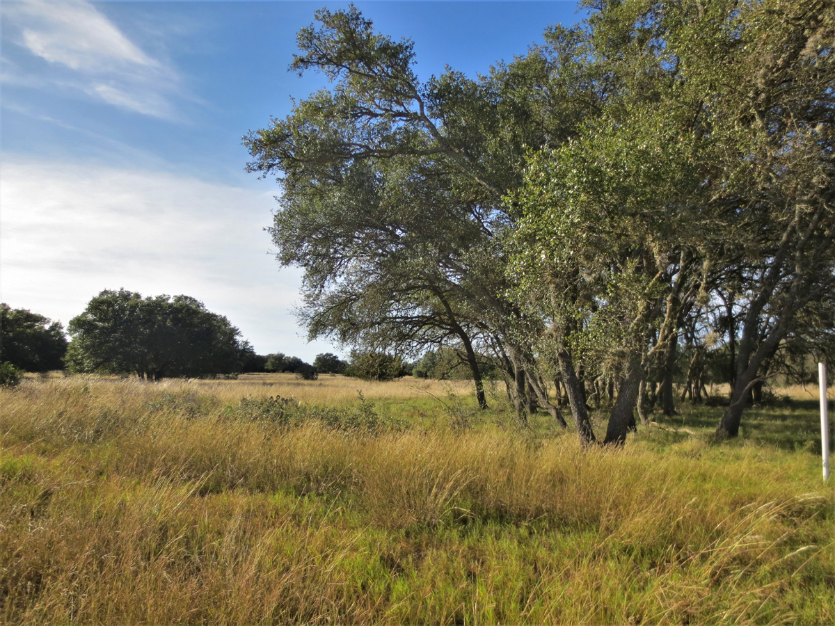 L0276/ 4 ACRES in Bridlegate Ranch.  Listed for sale with Gail Stone Realty. 830.796.4640