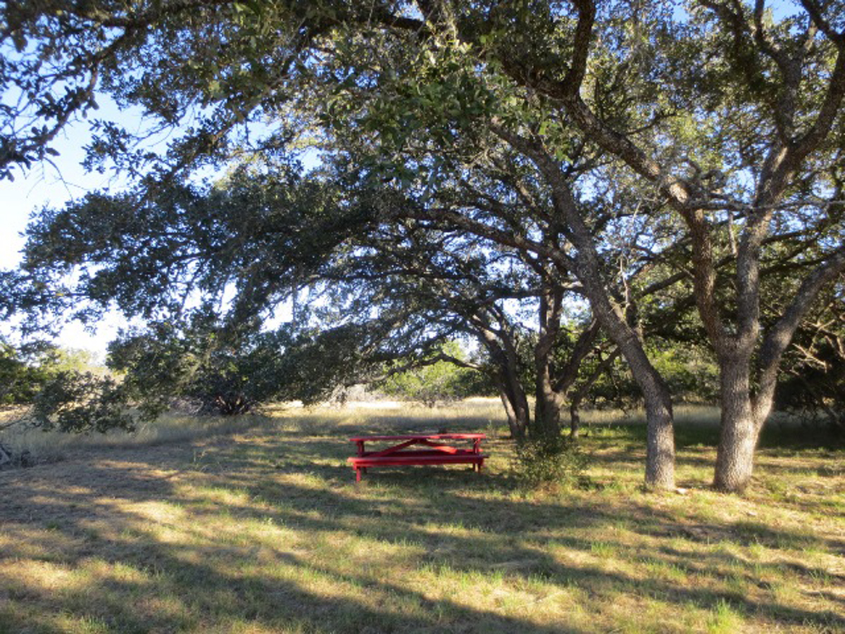 This is what you do when you have really nice, big oak trees