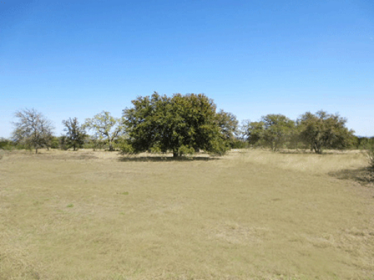 Another view of level land with oak tree