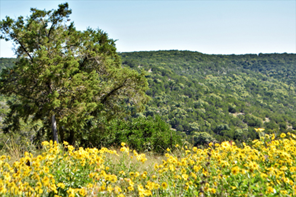 Cooper's Canyon is located near the trail's end, high on a ridge in Medina / L0274/