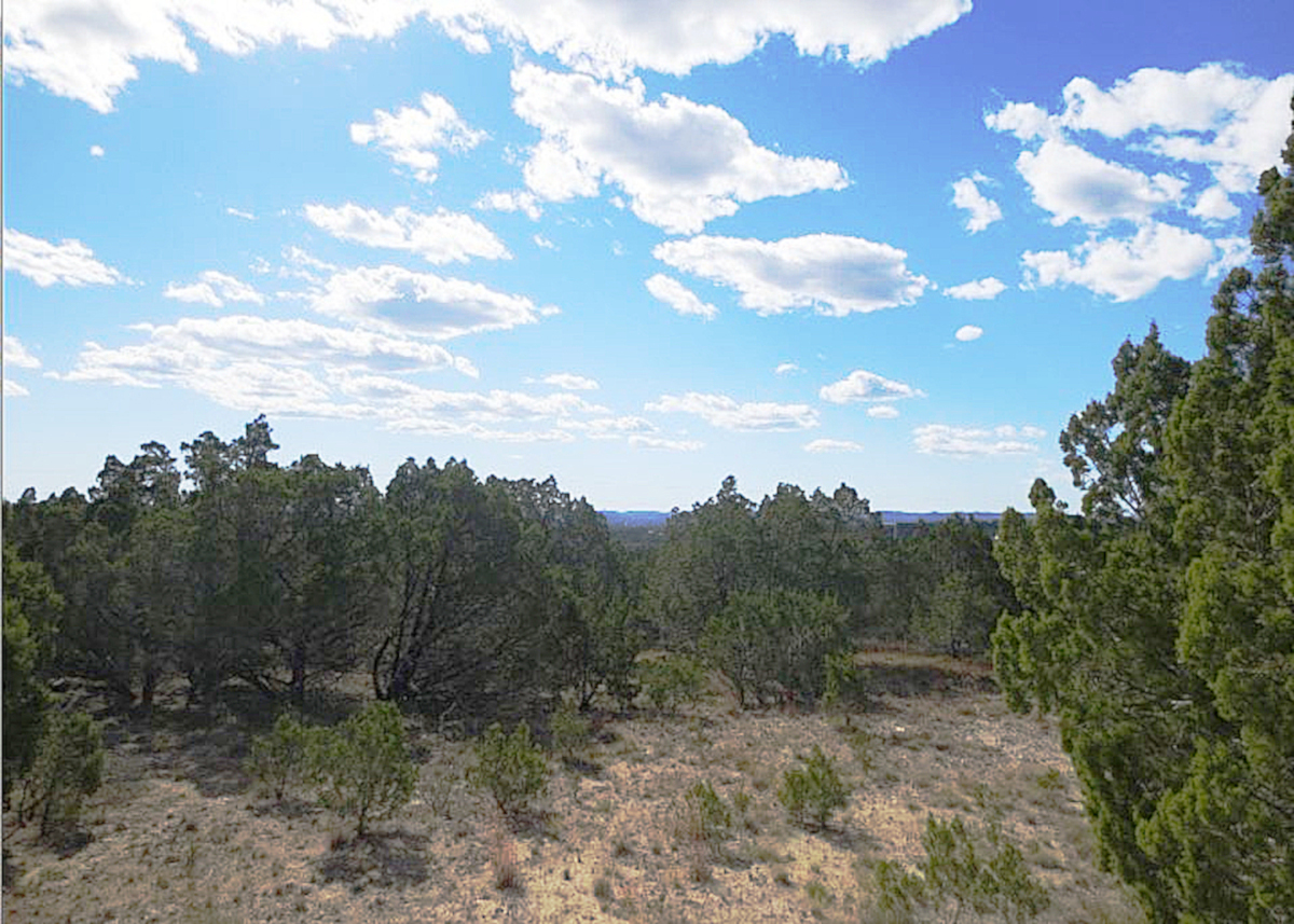 3.94 Acre Building Site in Pipe Creek
