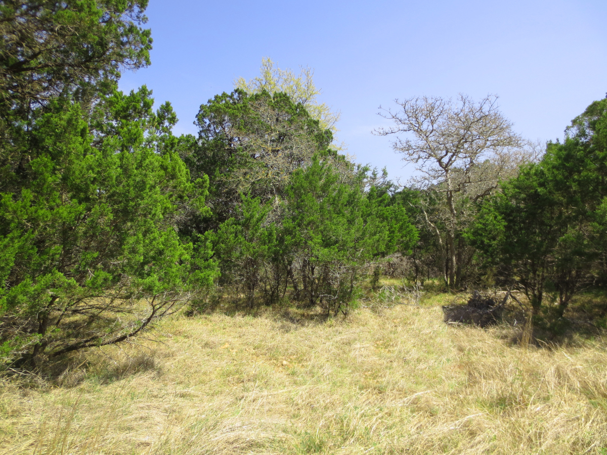 L0287 - Bandera Falls Lot 15. Listed with Gail Stone Realty in Bandera, TX. 830-796-4640