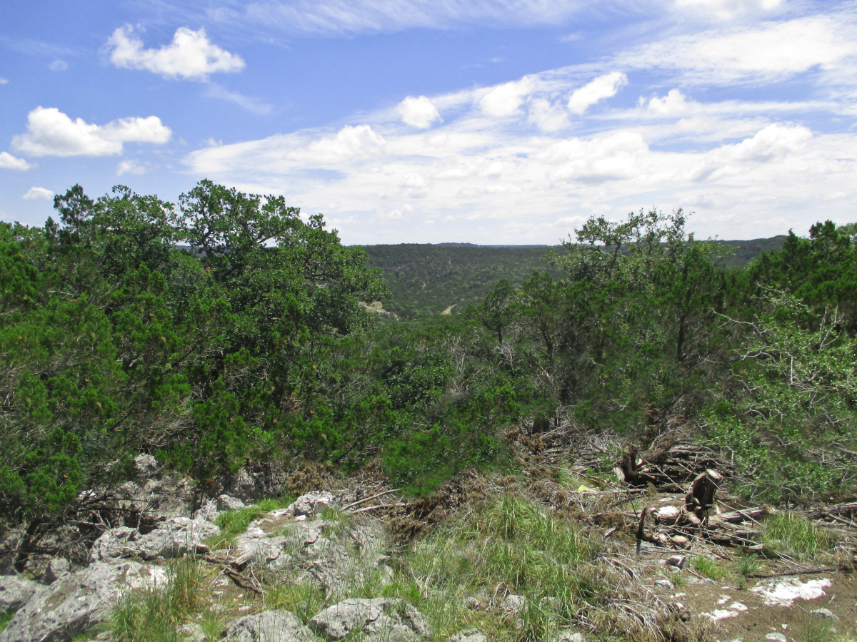 7.11 Acres at Castle Lake Ranch, L0285  Listed for sale with Gail Stone Realty 830.796.4640