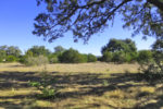 5.33 ACRES in BRIDLEGATE RANCH - SOLD
