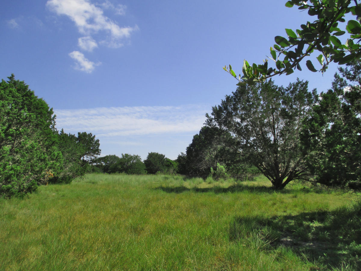 13.46 Acres on English Hollow