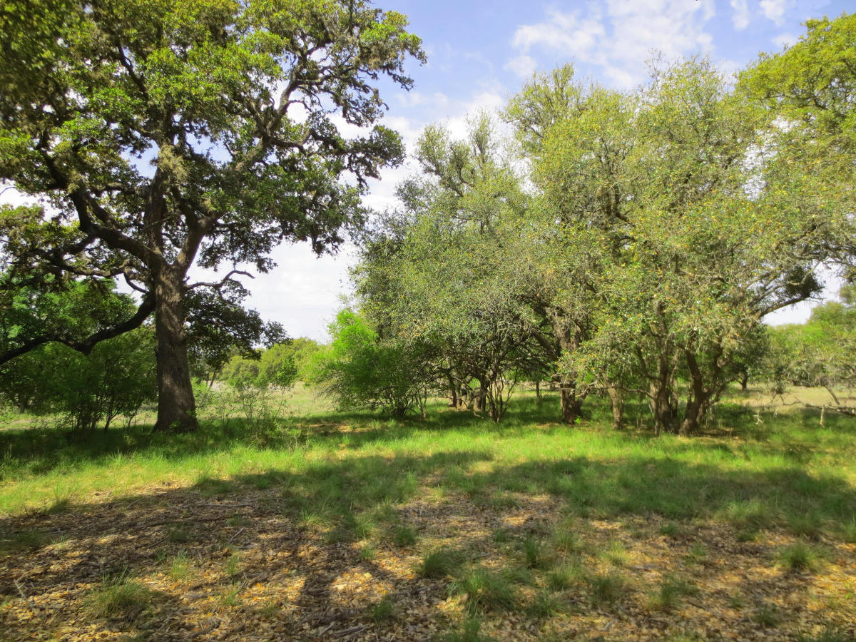 2 ACRES Lot 514 in Bridlegate Ranch. Call Gail Stone Realty in Bandera, TX. 830-796-4640