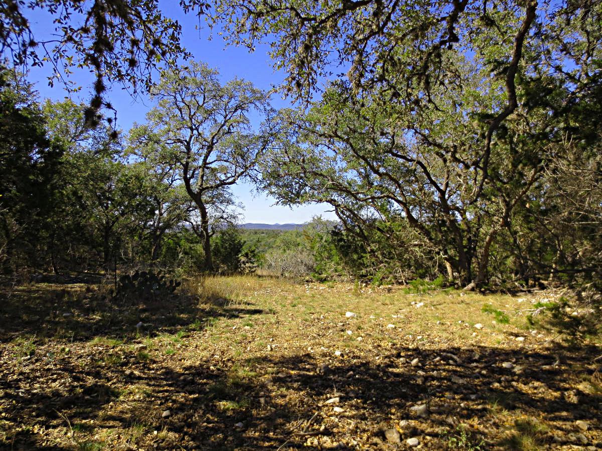 27 Acres near Tarpley.  Call Gail Stone Realty in Bandera, Texas. 830-796-4640