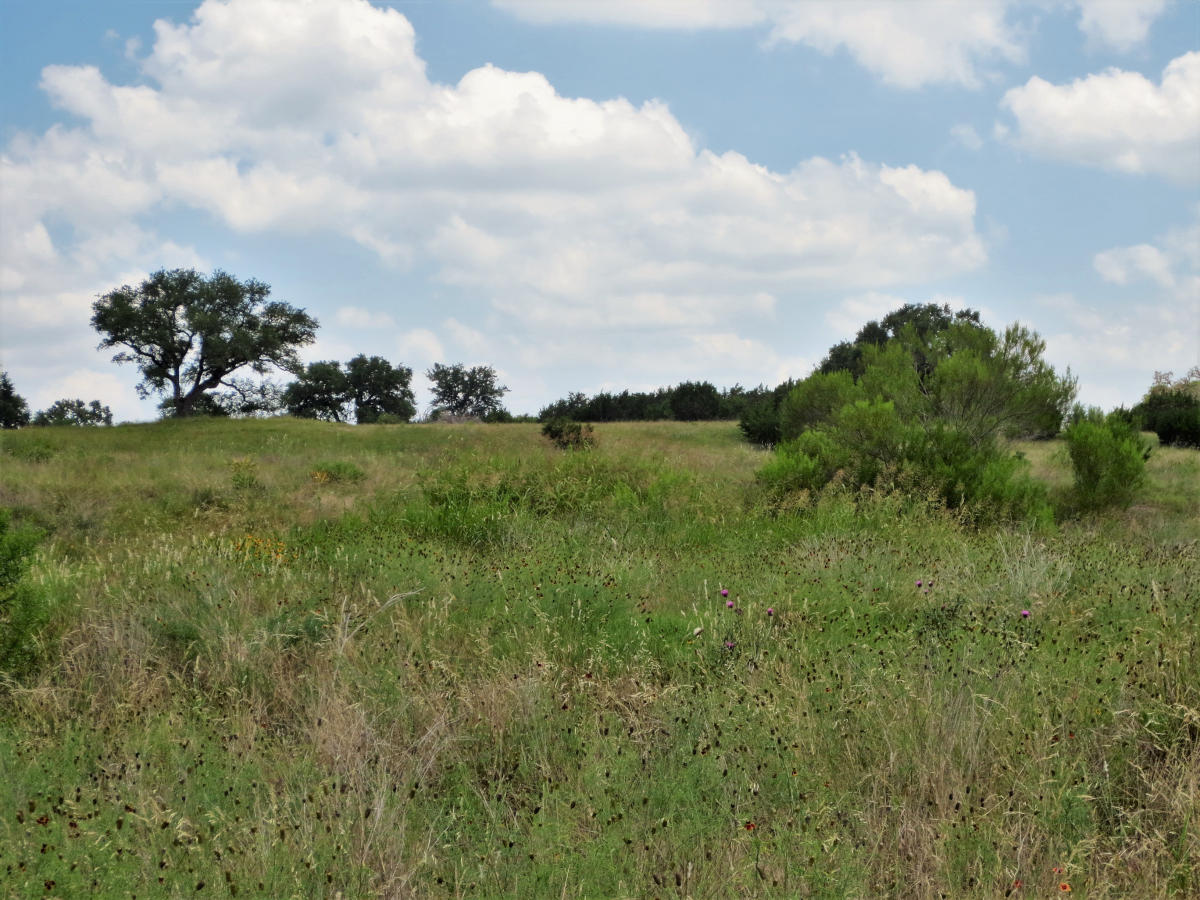 4 ACRES in Bridlegate Ranch Lots 799-800. - Listed for sale with Gail Stone Realty in Bandera, Texas. 830-796-4640