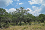 Comanche Path River Lot in Bandera, TX in the Texas Hill Country. / W0037