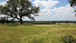 A two acre homesite with a view.