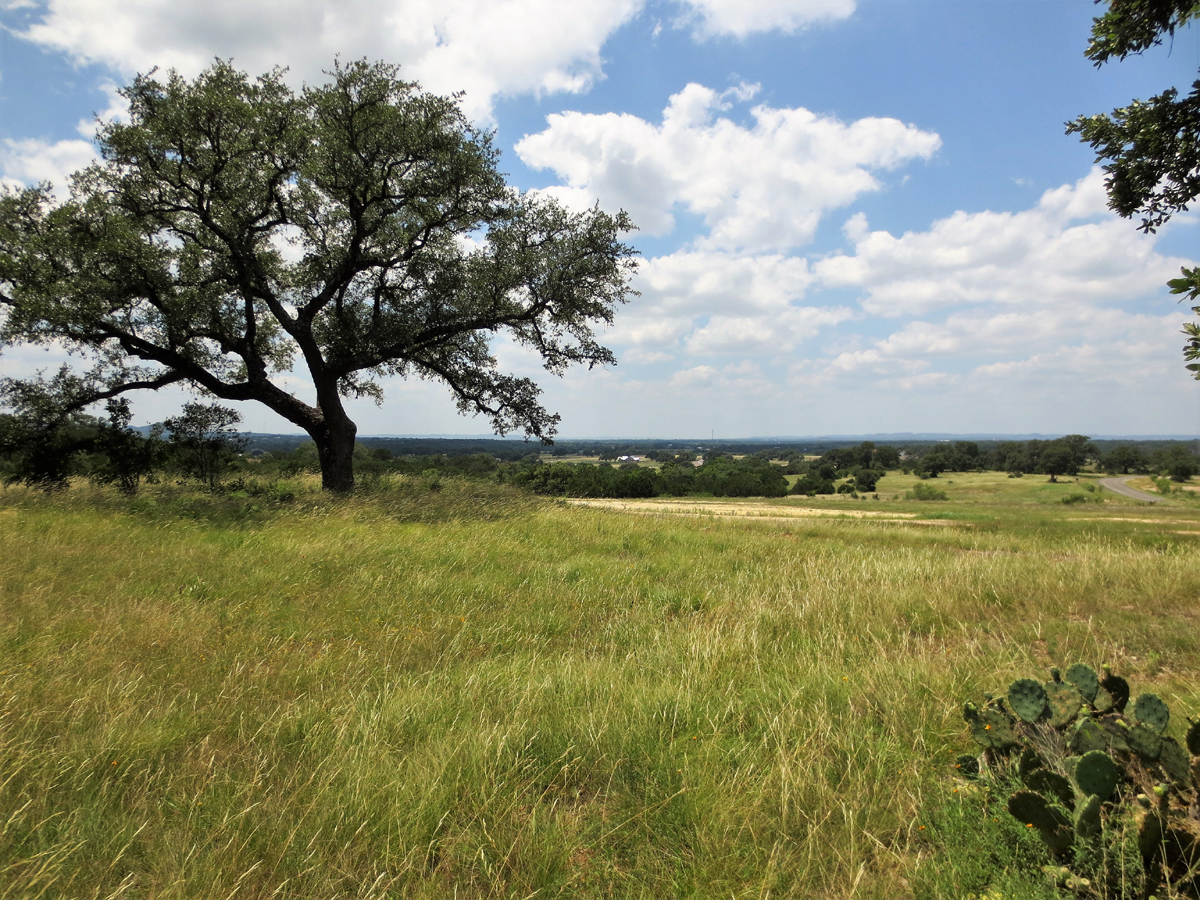 L0265B/Two Acre Homesite with views and near the park. Listed for sale with Gail Stone Realty. 830.796.4640